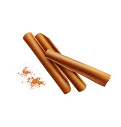 Cinnamon sticks powder composition vector