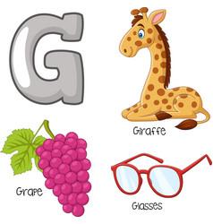 g alphabet vector image
