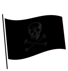 isolated black color flag with grey image of skull vector image