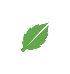 Leaves Icon logo element for template vector image