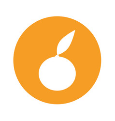Orange round icon vector