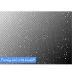 seamless white snowfall effect on black vector image vector image
