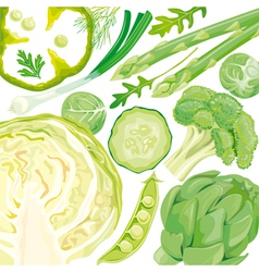 Mix of green vegetables vector image vector image