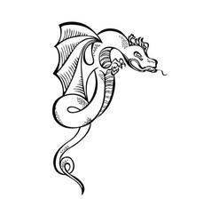fancy fabulous flying animal dragon vector image vector image