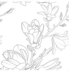 magnolia flowers bouquet detailed floral sketch vector image
