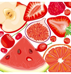 Mix red fruits and berries vector image