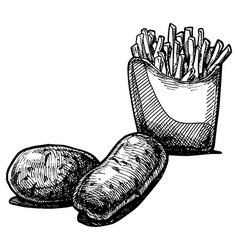 potato vector image