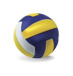 volley ball vector image vector image