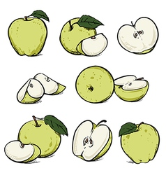 Green apple with leaf and slice diet fruit vector image vector image