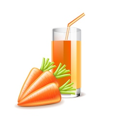 Carrot juice isolated on white vector