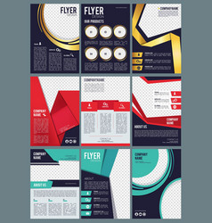 editable brochure business flyers ads in magazine vector image