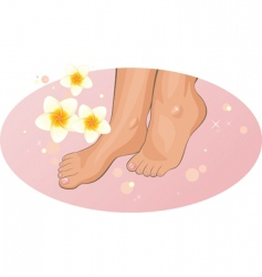 feet with frangipani flowers vector image