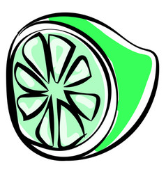 green lime on white background vector image