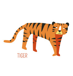 tiger from jungle cartoon book childish character vector image