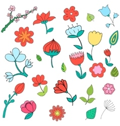 Different color flowers vector image