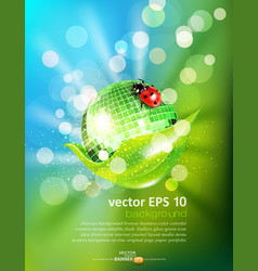 leaf mirrored disco ball and a ladybug vector image vector image