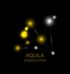 Aquila constellation bright yellow stars vector