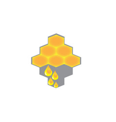 beehive with drops honey for logo design pure vector image