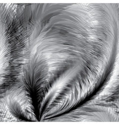 Black and white Feathers Seamless Pattern vector image