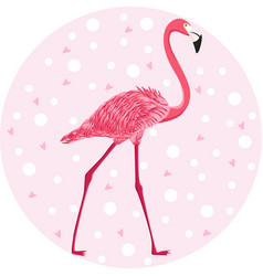 Cute pink flamingo on pastel background vector