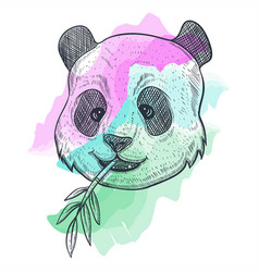 panda bamboo watercolor vector image
