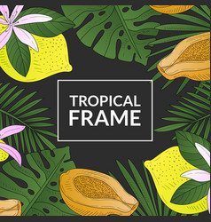 tropical banner template square frame with bright vector image