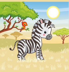 zebra is standing in savannah vector image