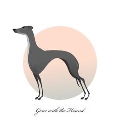Standing greyhound Stylized image dog vector image