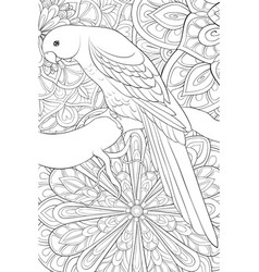 Adult coloring bookpage a cute parrot on the vector