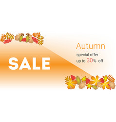 autumn sale banner and discount vector image