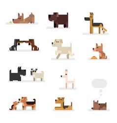 dog breeds flat set isolated on white vector image
