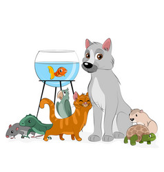 group pets vector image
