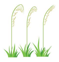 three plants icon cartoon style vector image