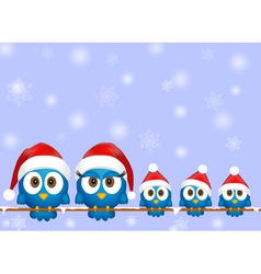 Cute christmas birds vector image vector image