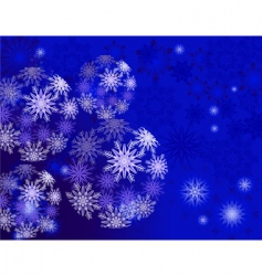 ice balls vector image