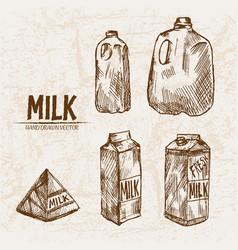 digital detailed line art milk vector image