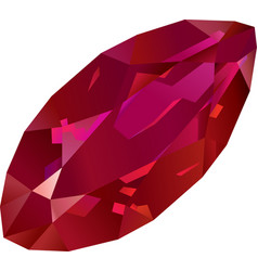 beautiful isolated red ruby vector image