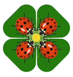 family dinner of ladybugs at the round table vector image