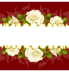 Frame whith white roses vector