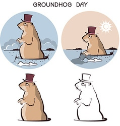 Groundhog day animal symbol of marmot on white vector