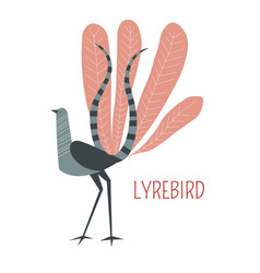 Lyrebird cartoon bird from australia vector