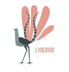 Lyrebird cartoon bird from australia vector