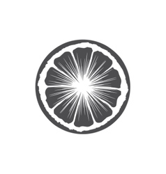 Orange Slice Isolated on white background vector image