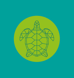 triangulated green turtle vector image