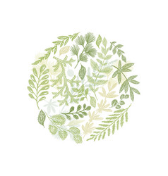circle green floral hand drawn composition vector image vector image