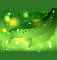 beautiful green background with leaves and dew vector image vector image