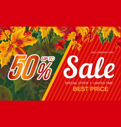 autumn sale banner design vector image