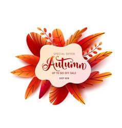autumn sale round banner background fall vector image