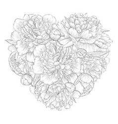 beautiful monochrome black and white heart vector image