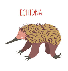 Echidna cartoon animal from australia vector